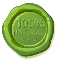 seal natural vector image