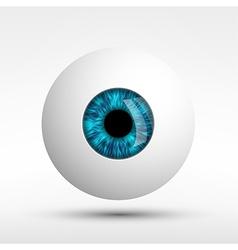human eye isolated on white background vector image