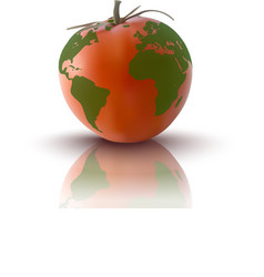 Red tomato with planet earth vector