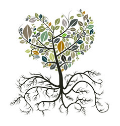Heart shaped tree with roots isolated on white vector