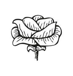 Rose in tattoo style hand drawn flower vector image vector image