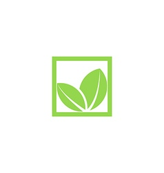 Green leaf logo shape plant in the square frame vector
