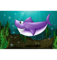 A big shark under the sea vector image