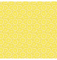Colorful Summer Citrus vector image