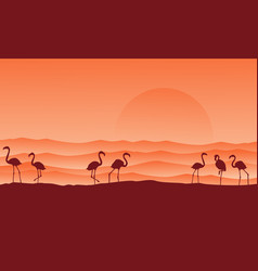 Desert scenery with flamingo silhouettes vector