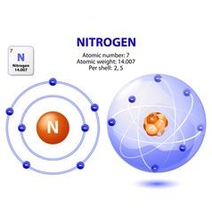 Atom nitrogen vector