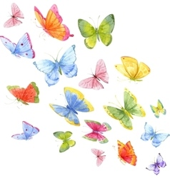Colorful watercolor butterflies vector image