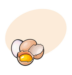 Whole and cracked broken chicken egg with yolk vector