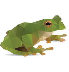 Frog abstract vector image vector image