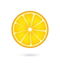 Orange icon on a white vector image vector image