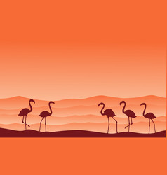 Collection hill scenery with flamingo silhouettes vector