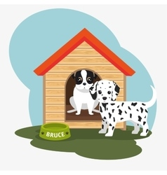 two dog house bowl food vector image