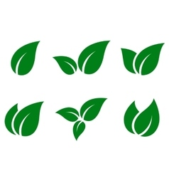 Green leaves icon set vector