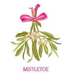 Hand drawn mistletoe vector