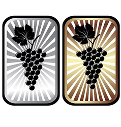 Shiny labels with grapes advertisement for wine vector