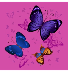 Background of colorful butterflies flying vector image