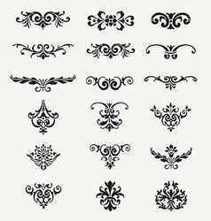 Calligraphic decorative design elements vintage ve vector