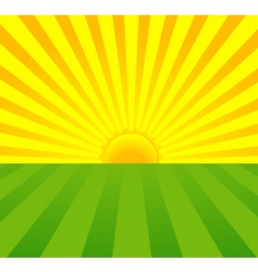 summer sunrise vector image vector image