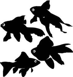 Goldfish or common fish silhouette vector