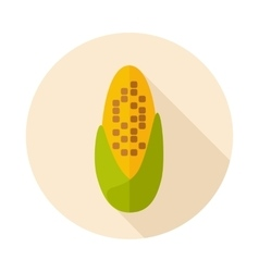 Corncob flat icon with long shadow vector