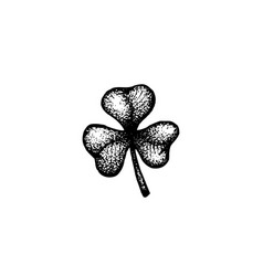 Hand drawn shamrock vector