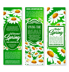 Hello spring floral banner set with daisy flowers vector