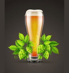 Glass of light lager beer vector