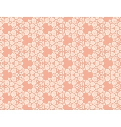 Floral lace pattern vector image vector image