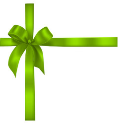 green realistic bow with ribbons vector image