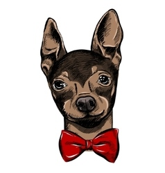 Hand drawn fashion with the bow tie vector