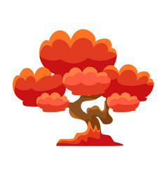 Red tree bonsai miniature traditional japanese vector