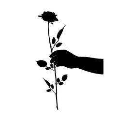 Hand with rose vector