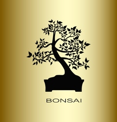 Silhouette of a bonsai tree vector image