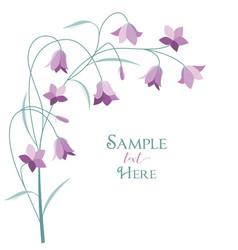 summer flower campanula vector image