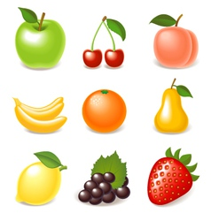 Fruit icon set vector