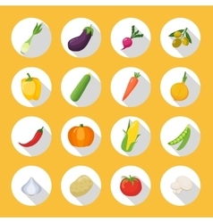 Vegetables colored isolated icon flat set vector