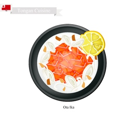Ota ika or tongan raw fish in fresh coconut cream vector