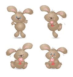Aester rabbit set vector