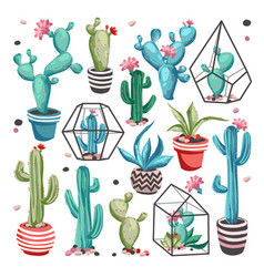 Cacti flower set vector