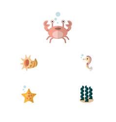Flat icon marine set of seashell cancer alga and vector