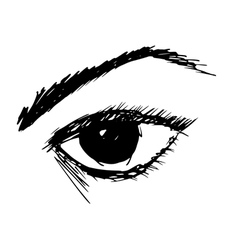 Woman eye vector