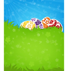 Eggs on a green meadow vector image