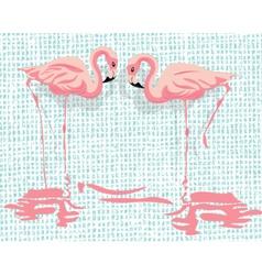 Pink flamingo birds vector