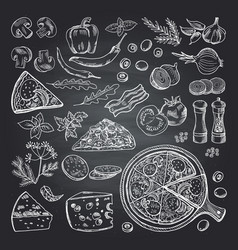 pizza ingredients on black vector image