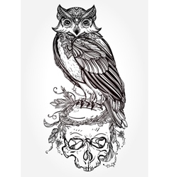 Owl with ornate scull design vintage style vector