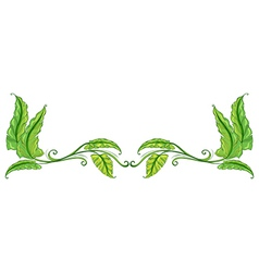 A green leafy border vector