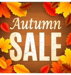 Autumn Sale Anouncement vector image vector image
