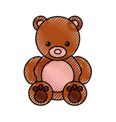 Cute bear teddy icon vector