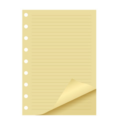 realistic line paper sheet element vector image vector image