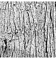 Tree bark texture vector